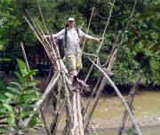 Monkey_bridge1